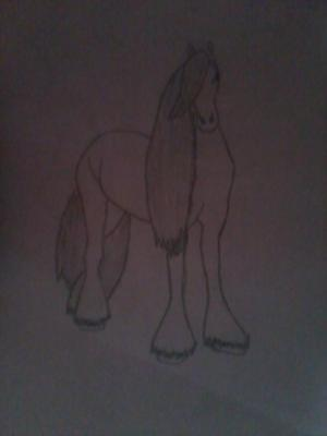 horsewith long tail+mane