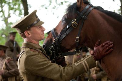 Being Checked (A War Horse Movie Picture)