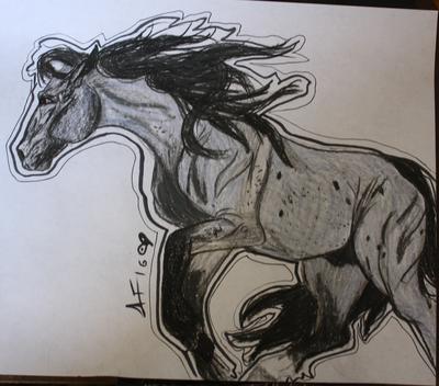 Cousin Grey Drawing