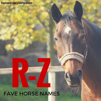 Share your favorite R-Z horse names!