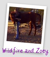 Wildfire and Zoey