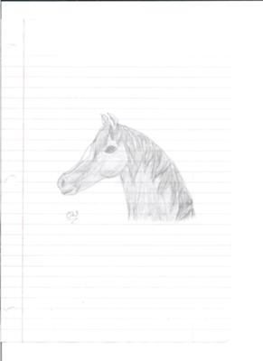 Shaded Horse Drawing