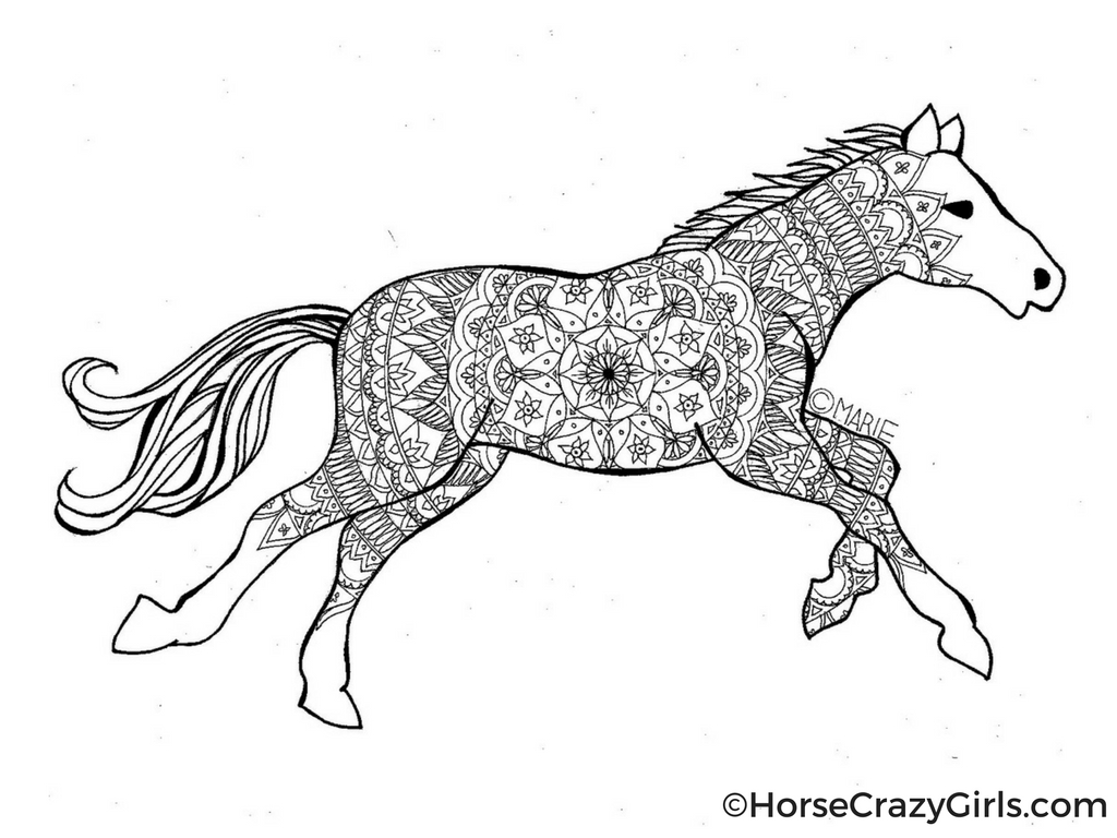 A horse coloring page featuring a galloping horse with lines in the middle to color in.