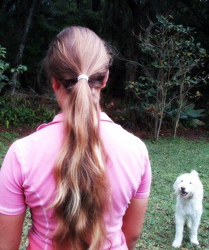 Equestrian Hairnet