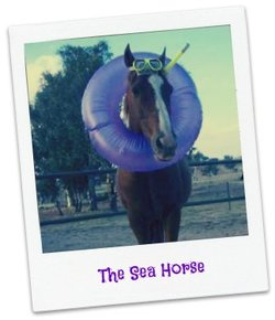 A horse dressed like he or she is ready to go swimming with a pool floaty around its neck and goggles and a snorkel on.