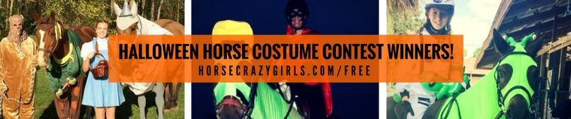 Halloween horse costume contest 2016 winners
