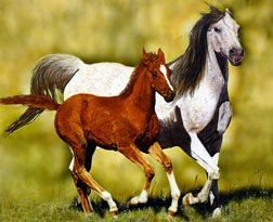 HORSES ARE FOREVER FRIENDS