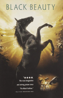 A picture of the movie Black Beauty.