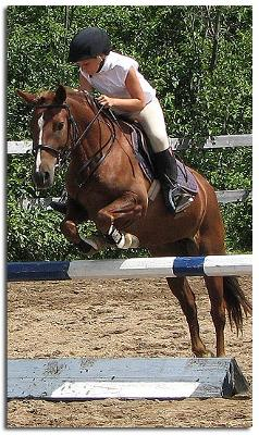 this is me and my jumping horse lou lou