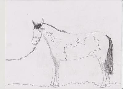 I WAS FRAMED drawing