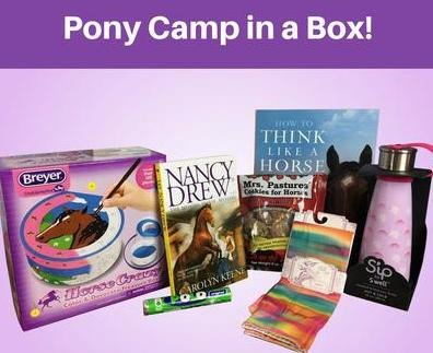 Pony camp in a box!