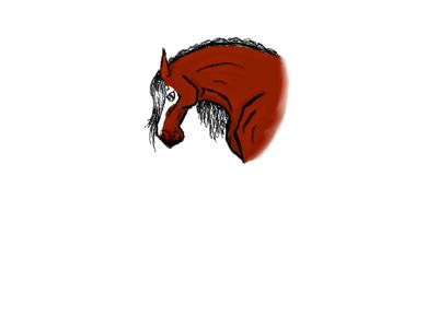 a horse sketch
