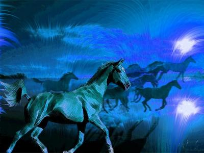 horses in the night