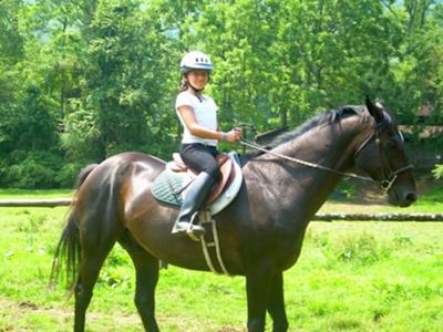 me and my horse black beauty